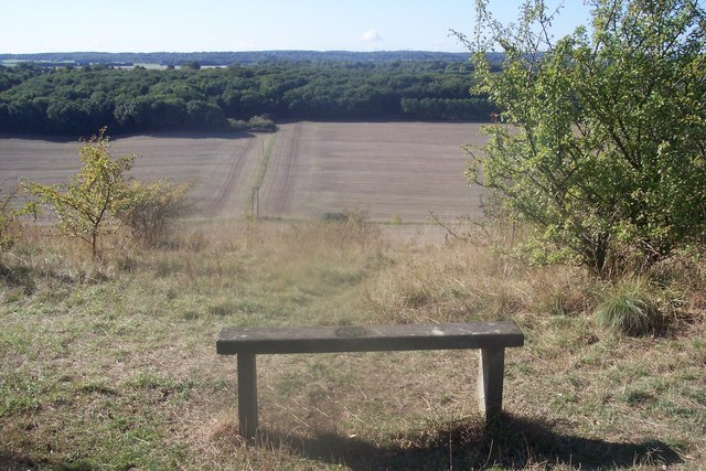 Bench in Darland Banks Nature Reserve