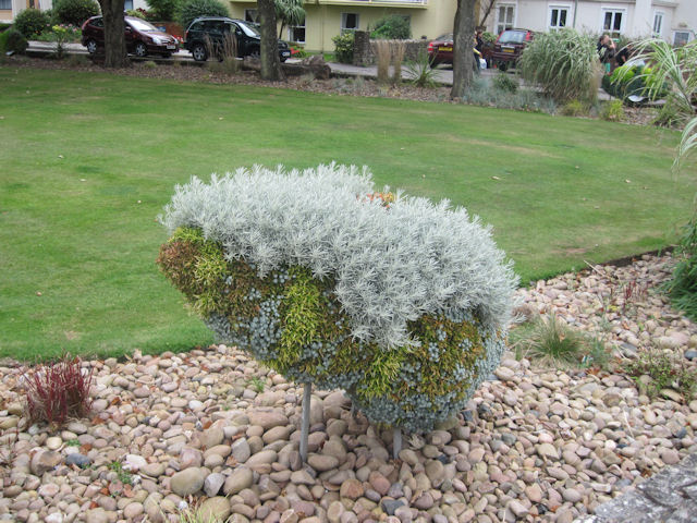 What is it? Topiary