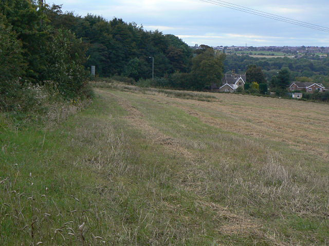 The slopes of Hood Hill