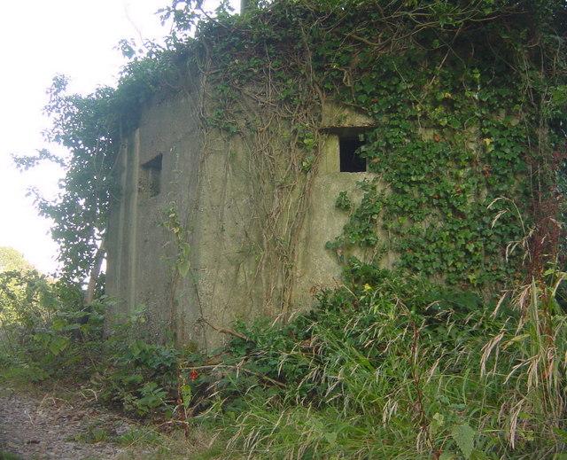 Overgrown WWII Bunker