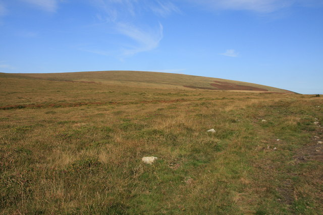 Throwleigh Common