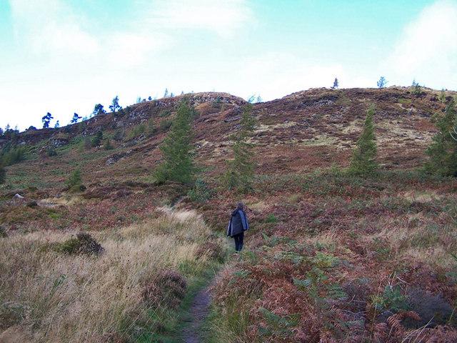 Birnam Hill path
