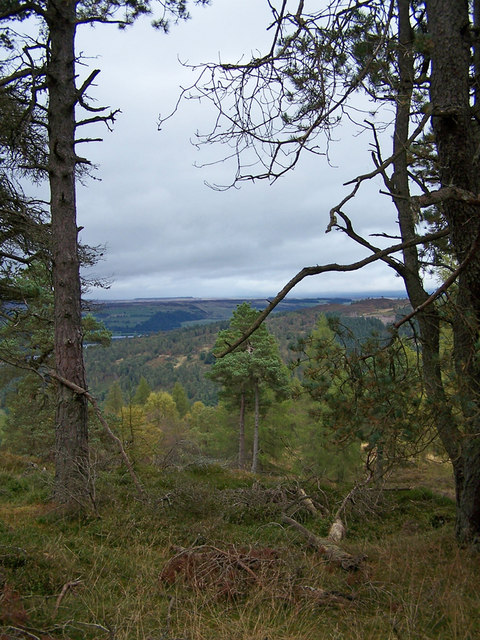 East from Birnam Hill