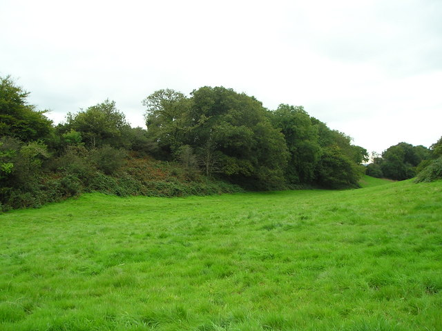 Pasture and hill fort