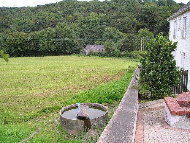 Elvet Woollen  Mill