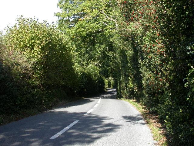 Sway, Birchy Hill