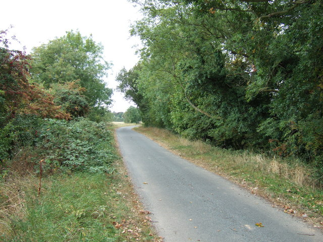 Country lane on an old sea bank north of Clenchwarton