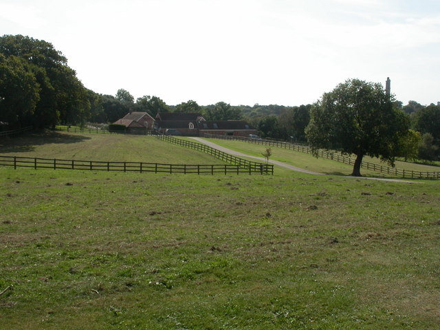 Sway, Kings Farm