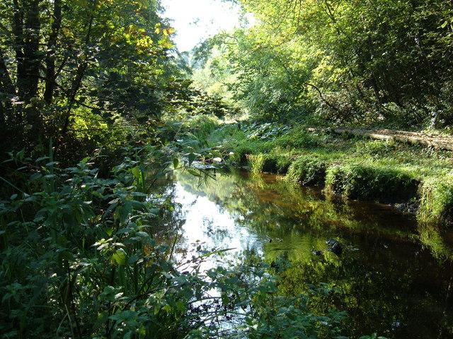 The River Derwent, Forge Valley
