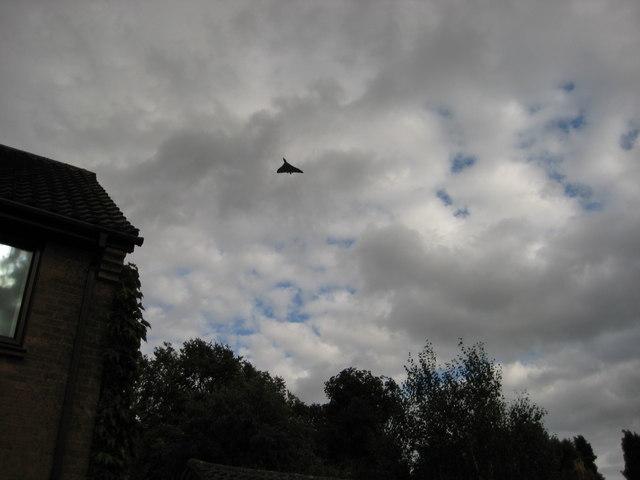Avro Vulcan over Northants