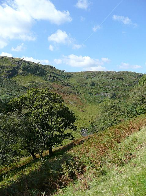 Cwm Irfon below Esgair Bellaf, Powys