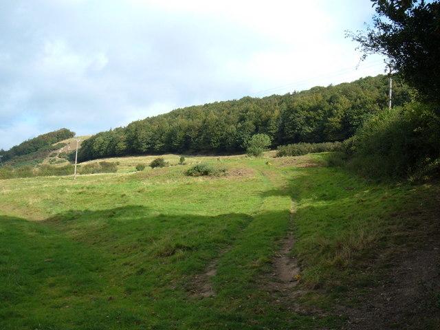 Farmland, Everley Banks