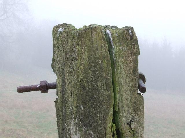 Oak Gatepost
