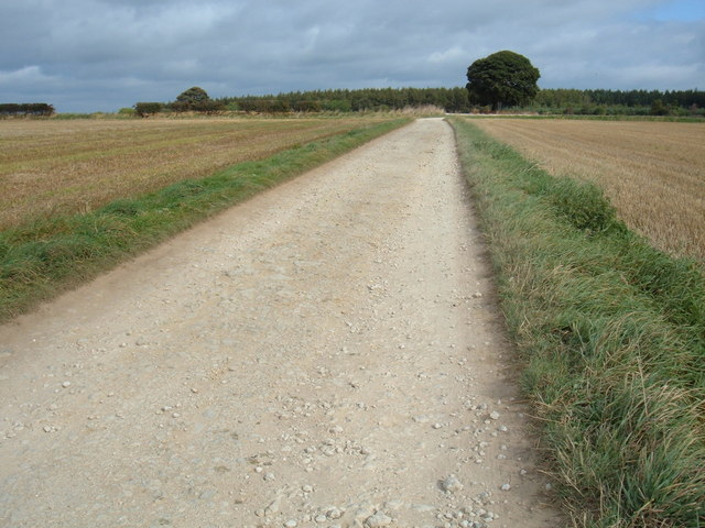 Bridleway near Thirlsey
