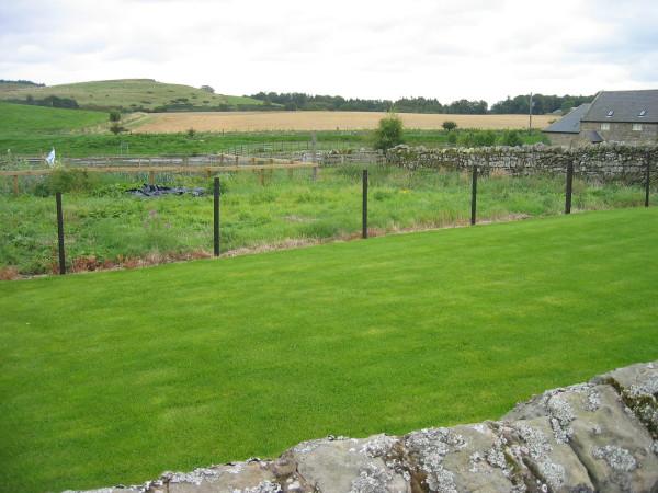 Harehope Farm Cottage's Allotments