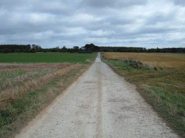 Bridleway to Inn Moor