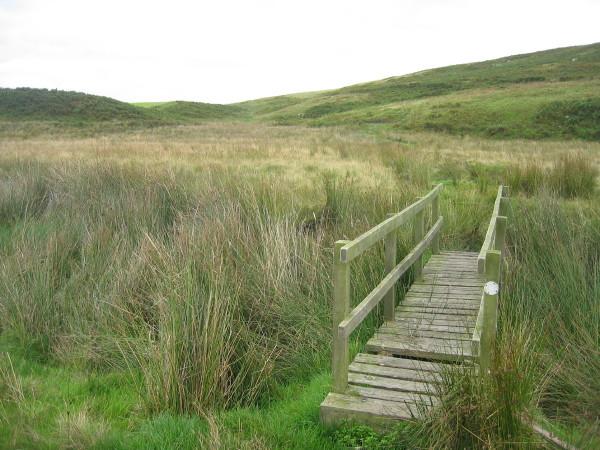Footbridge over Harehope Burn