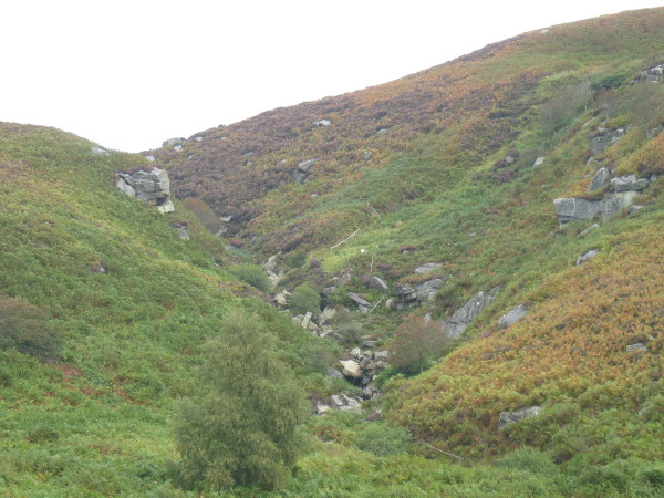 Corbie Crags and Harehope Burn