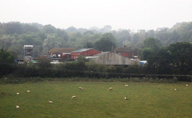 Forge Farm