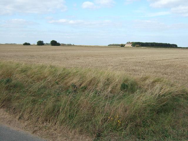 A stubble field behind a high verge near Fern Farm