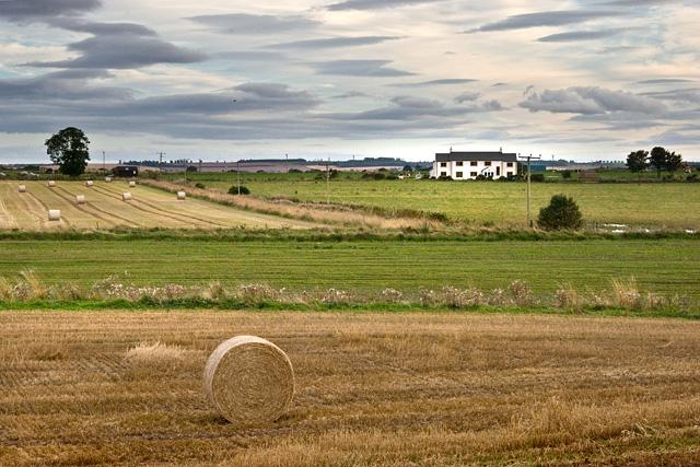 Fields near Inch of Arnhall