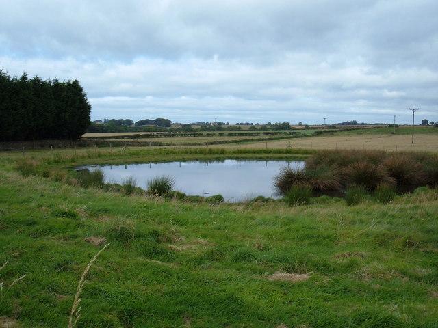 Pond, Suffield