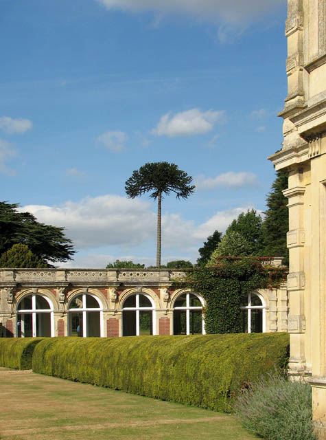 Somerleyton Hall - the orangery