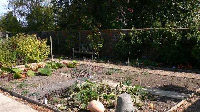 Garden with vegetable patch and bower