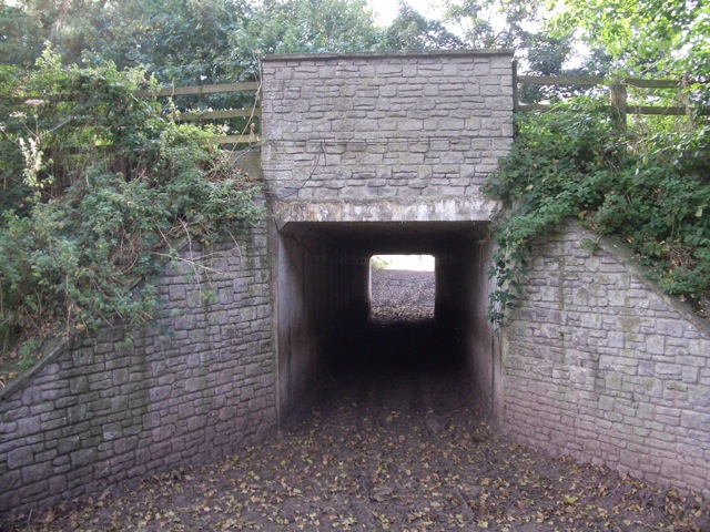 Glasbury: Farm underpass under the A438