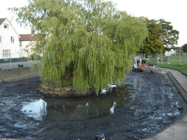 Pond  on  the  village  green.