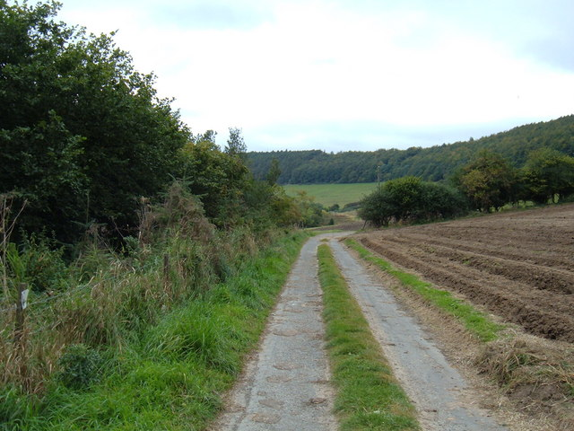 Track to  Freeze Gill  Farm