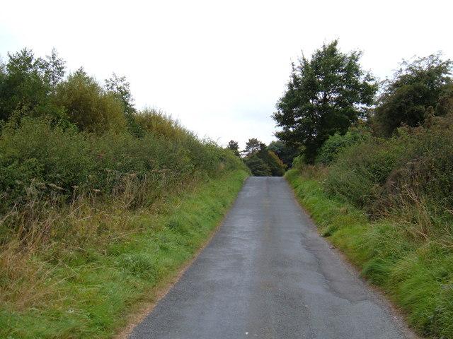 Minor Road, Troutsdale