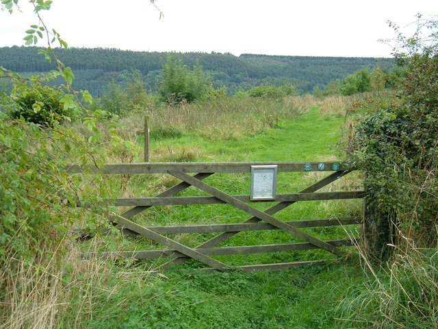 Gate to Open Access land, Troutsdale