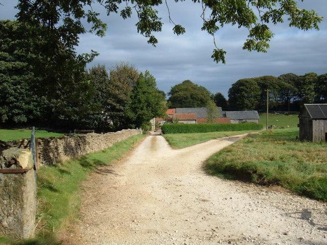 Track to  Moorsome Farm