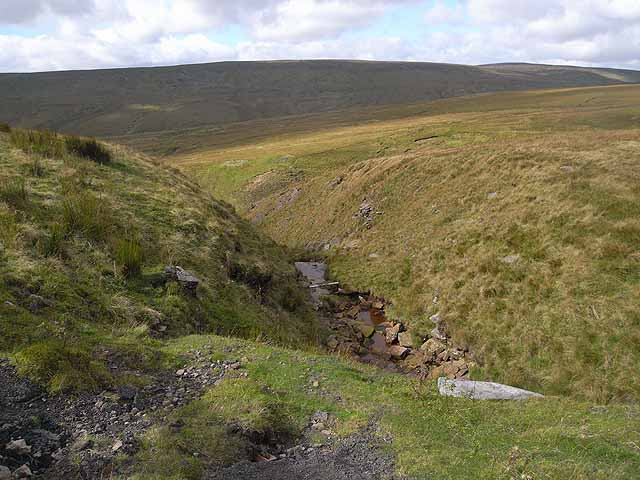 Tributary of West  Beck