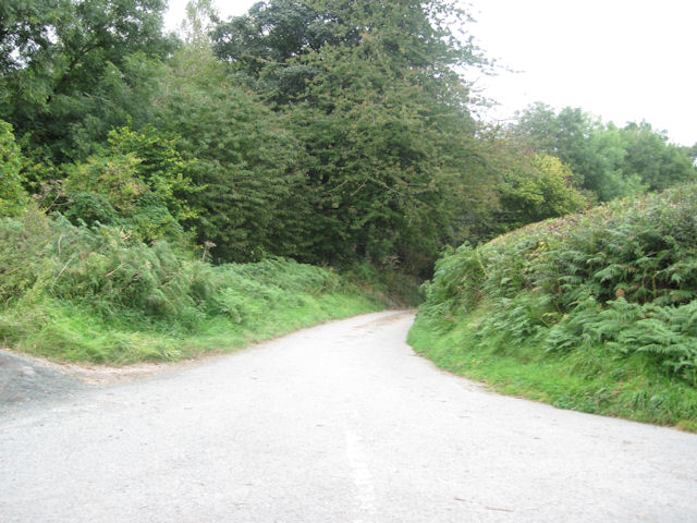 Lane near Moydog Fawr