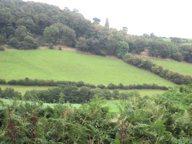 Hillside below Cefn Du Uchaf