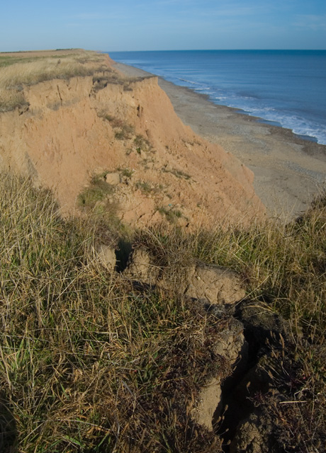 Tunstall cliffs