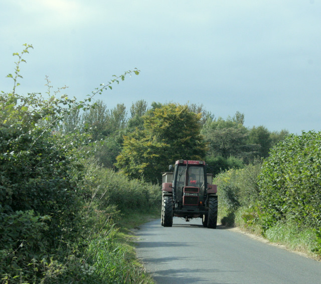 2009 : Tractor and trailer on the lane to Bremhill