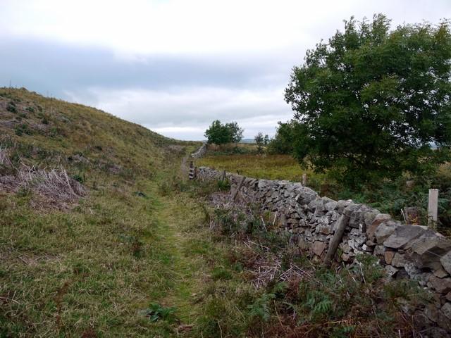 Bridleway north of Humbleton Hill
