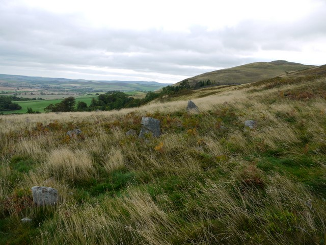 Hillfort north of Harehope Hill