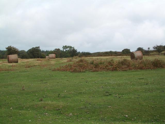 Common land below Twmpa: bales of grass and bracken