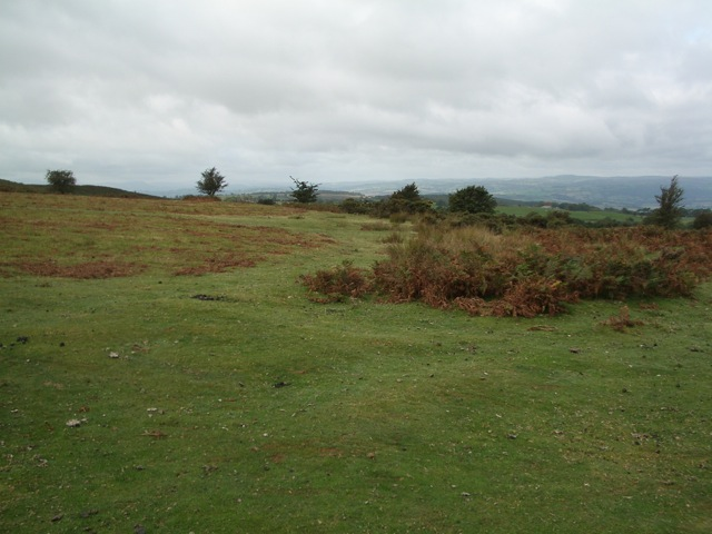 Common land on the northern flank of Twmpa
