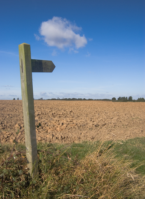 Footpath to Hilston
