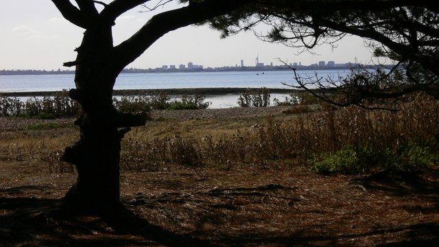 West Hayling Local Nature Reserve