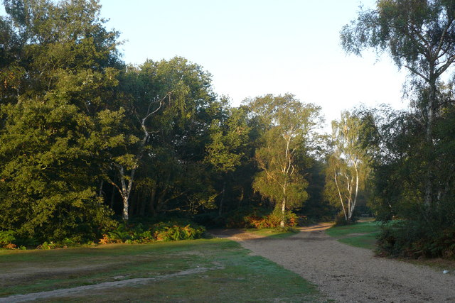 Bridleways on Wimbledon Common