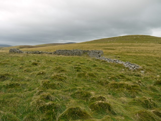 Rectangular sheepfold east of White Law