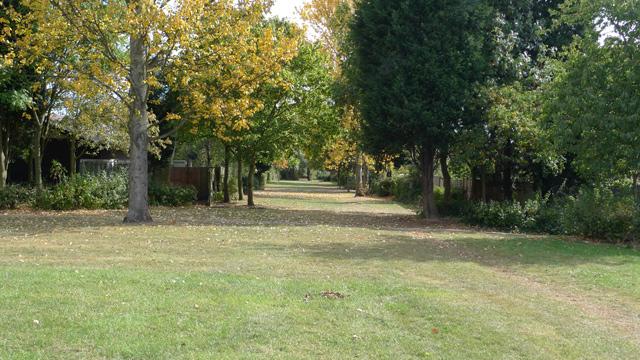 Parkland at Beanhill, Milton Keynes.