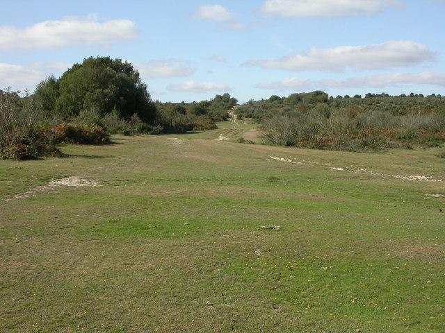 Boundway, lawn