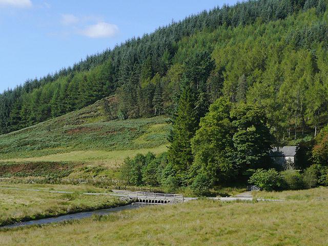 In Cwm Irfon by Llanerch Yrfa, Powys
